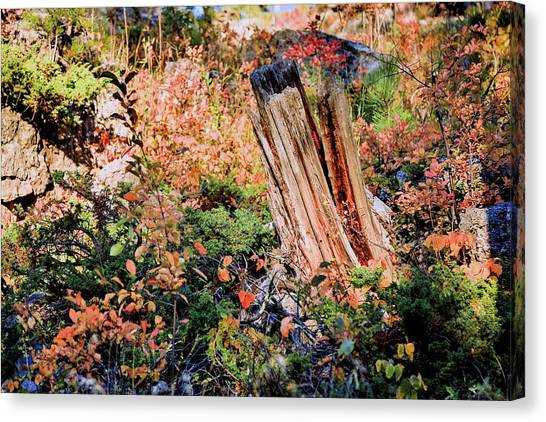 Forest Floral Canvas Print
