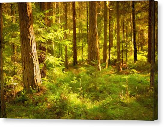 Canvas Print - Forest by Impressionist Art