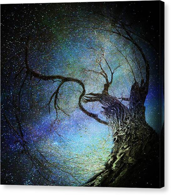 Forest Magic Canvas Print