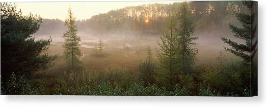 The Legion Canvas Print - Forest, Northern Highland-american by Panoramic Images