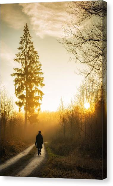 Baden Wuerttemberg Canvas Print - Forest Path Into The Warm Orange Sunset by Matthias Hauser
