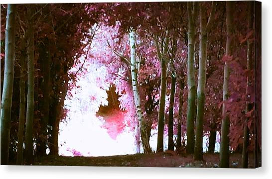 Forest Paths Canvas Print - Forest Path Pink by Candy Floss Happy