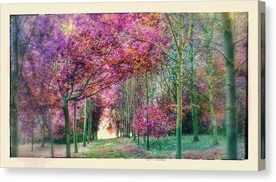 Forest Paths Canvas Print - Forest Path Soft Pink Green by Candy Floss Happy