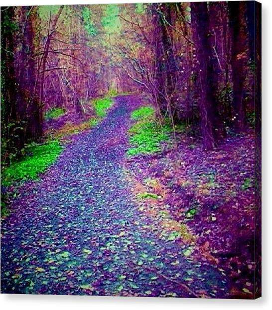 Floss Canvas Print - #forest #purple #path #green #woodland by Candy Floss Happy