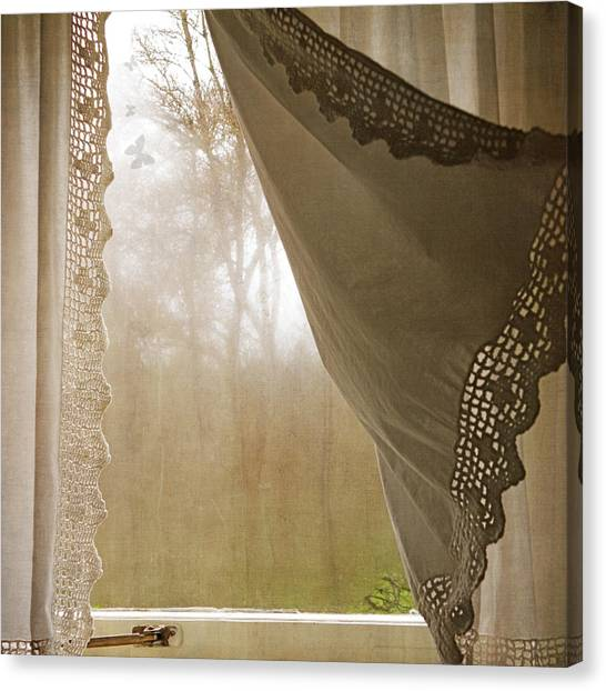 Forest Through The Window Canvas Print
