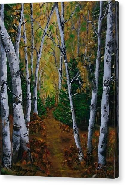 Birch Tree Forest Trail  Canvas Print