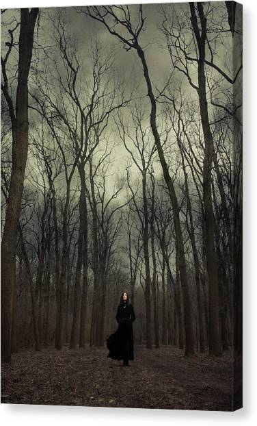 Black Forest Canvas Print - Forest Witch by Cambion Art