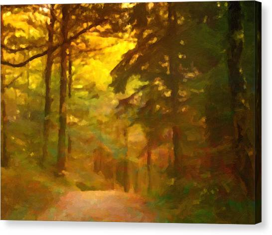 Canvas Print - Forestlight by Impressionist Art