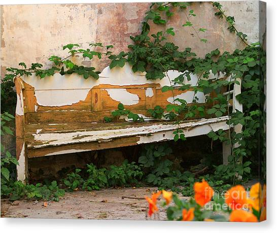 The Forgotten Garden Canvas Print