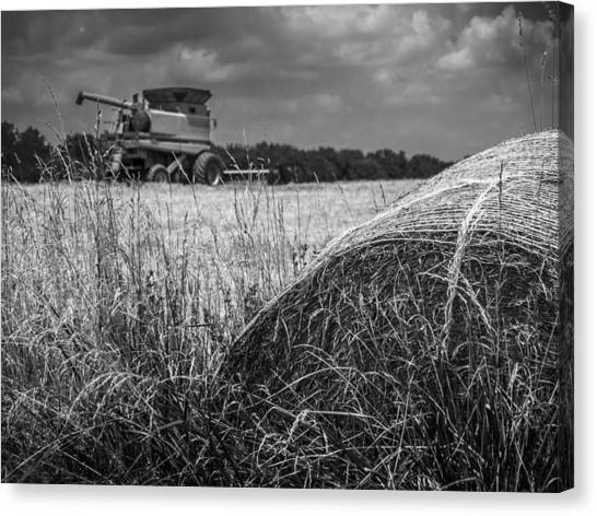Forgotten Harvest Canvas Print