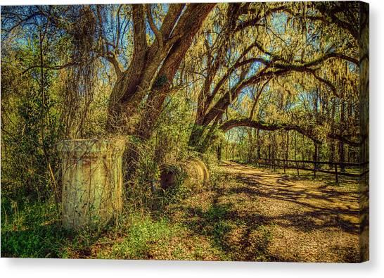 Forgotten Under The Oaks Canvas Print