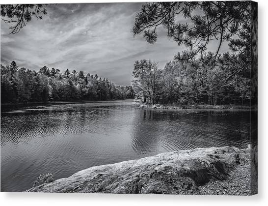 Fork In River Bw Canvas Print