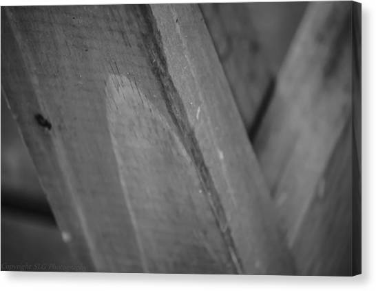 Form And Function Canvas Print by Stacie  Goodloe