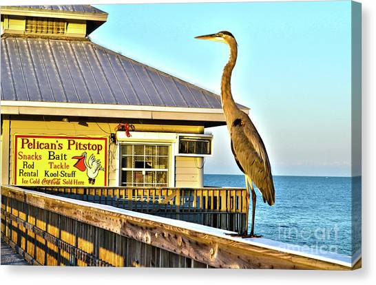 Fort Myers Beach Bird On Pier Canvas Print