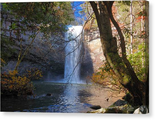 Foster Falls 1 Canvas Print by Dale Wilson