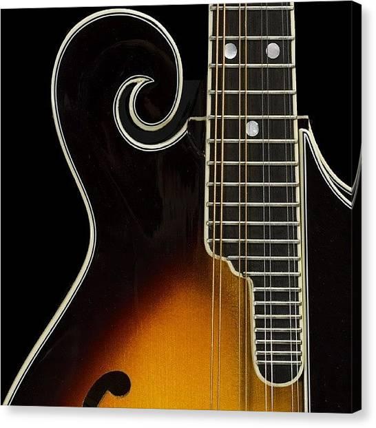 Mandolins Canvas Print - Foto De Producto #mandolin #fender by Fechow Armeaga