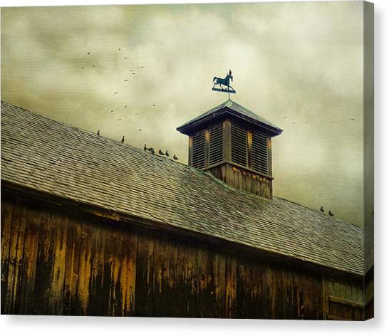 Foul Weathered Roost Canvas Print