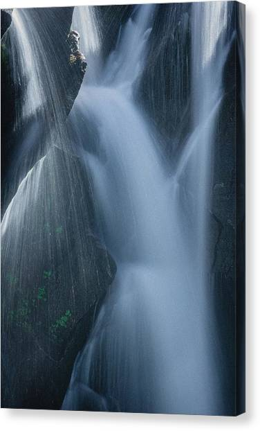 Fountain Nature Canvas Print
