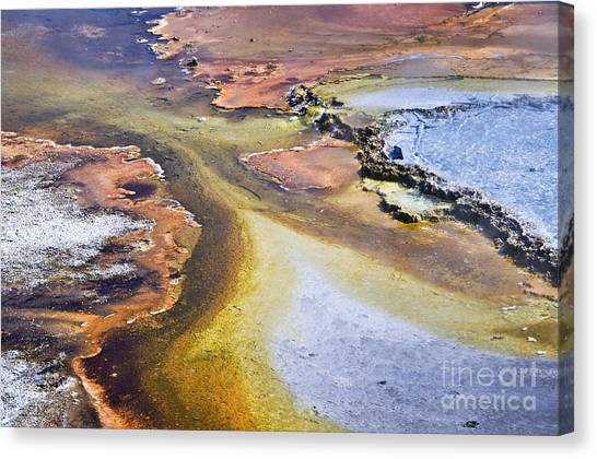 Yellowstone Canvas Print - Fountain Paint Pot by Delphimages Photo Creations