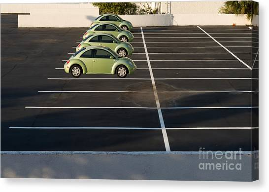 Four Green Beetles Canvas Print