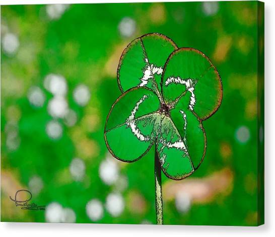 Four Leaf Clover Canvas Print