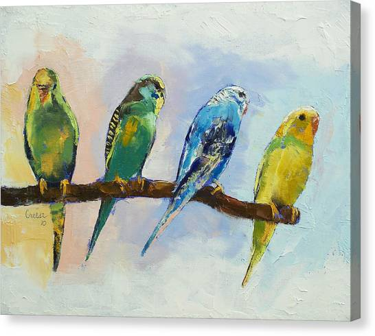 Parakeets Canvas Print - Four Parakeets by Michael Creese