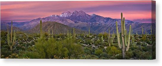 Sonoran Desert Canvas Print - Four Peaks Sunset Panorama by Dave Dilli
