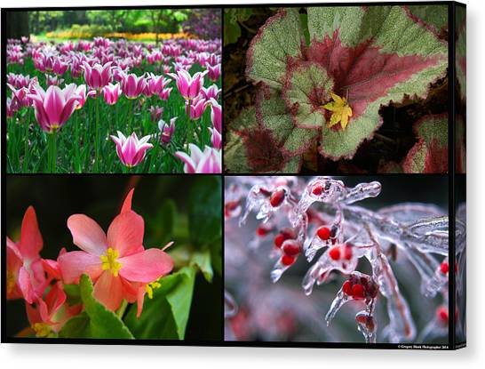 Four Seasons Of Flowers Canvas Print