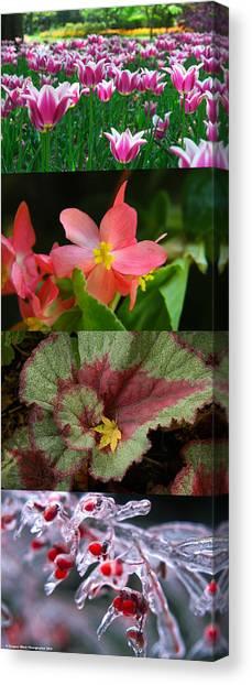 Four Seasons Of Flowers Vert Canvas Print