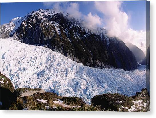 Fox Glacier Canvas Print - Fox Glacier Westland National Park New by Tui De Roy