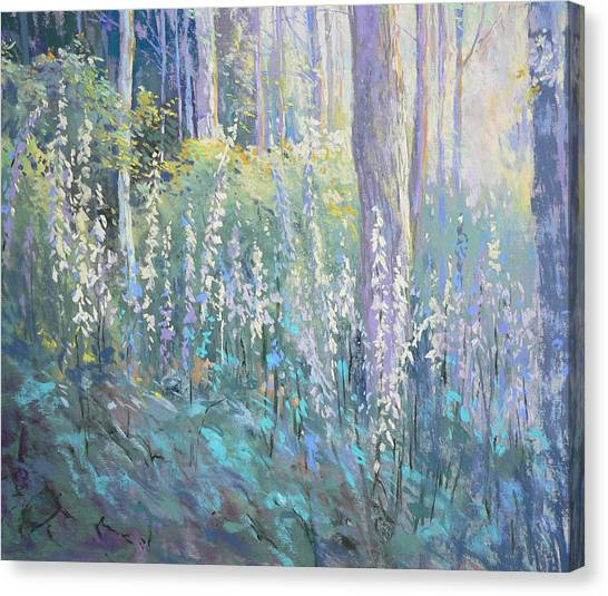 Foxgloves In The Woods Canvas Print by Jackie Simmonds