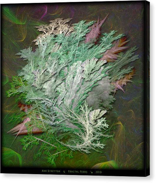 Fractal Ferns Canvas Print