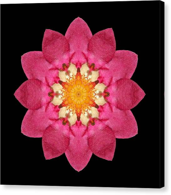 Fragaria Flower Mandala Canvas Print