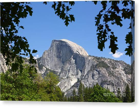 Framed Half Dome Canvas Print