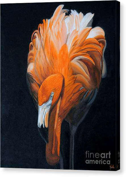 Frank The Flamingo Canvas Print