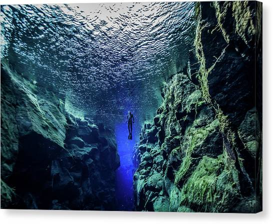 Free Diving Canvas Print by Nudiblue