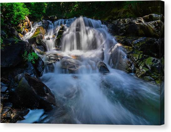 Free Streaming Canvas Print