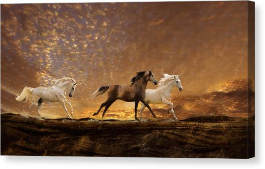 Canvas Print featuring the photograph Freed Spirits by Melinda Hughes-Berland