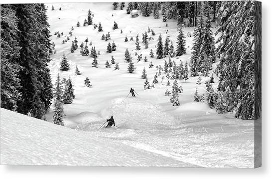 Pine Trees Canvas Print - Freeriders by Marcel Rebro