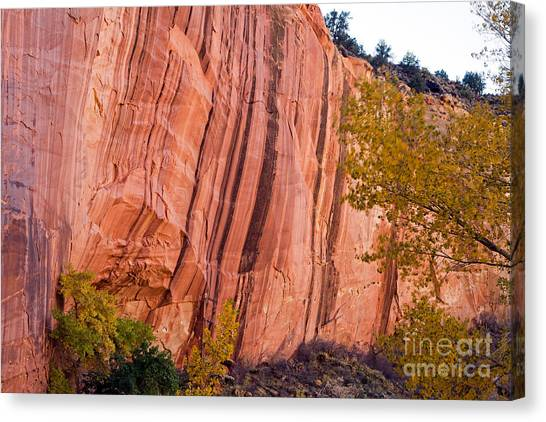Fremont River Cliffs Capitol Reef National Park Canvas Print