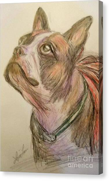 French Bull Dogs Canvas Print - French Bull Dog by Lyric Lucas