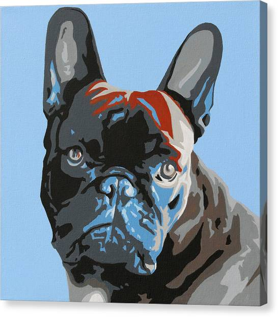 French Bull Dogs Canvas Print - French Bulldog by Slade Roberts