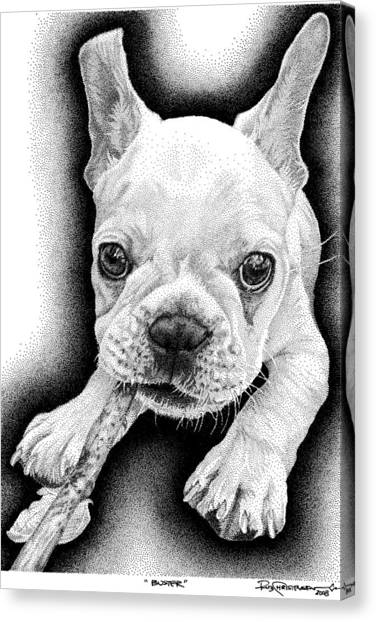 Frenchie Canvas Print by Rob Christensen