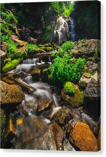 Fresh And Free Flowing Canvas Print