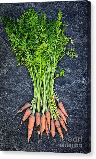 Carrots Canvas Print - Fresh Carrots From Garden by Elena Elisseeva
