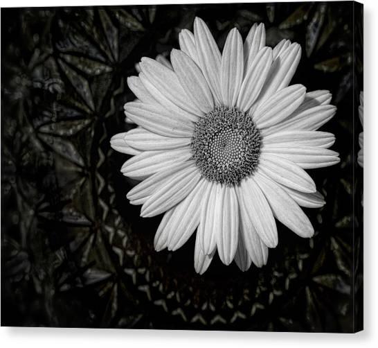 Canvas Print featuring the photograph Fresh Cut by Kristi Swift