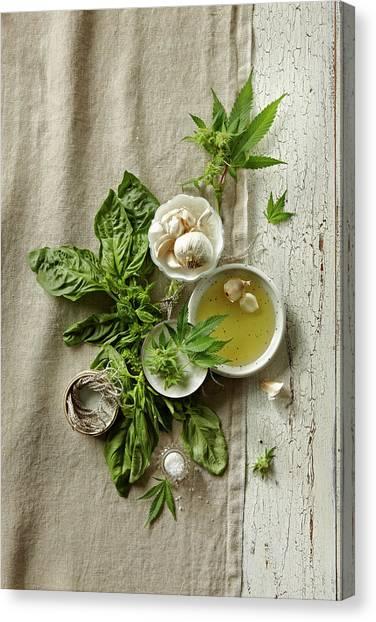Fresh Ingredients With Marijuana Canvas Print by Lew Robertson