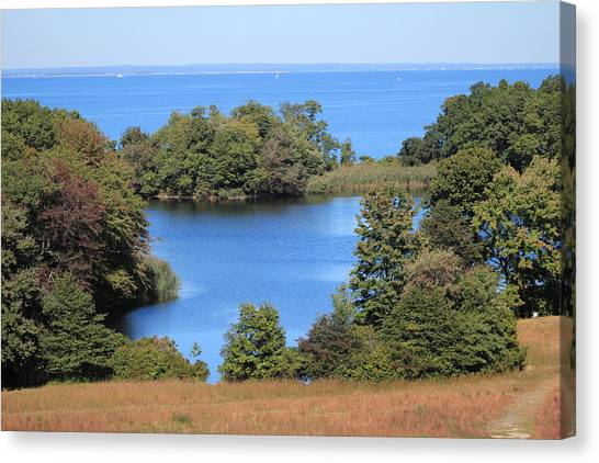 Fresh Pond At Caumsett Canvas Print