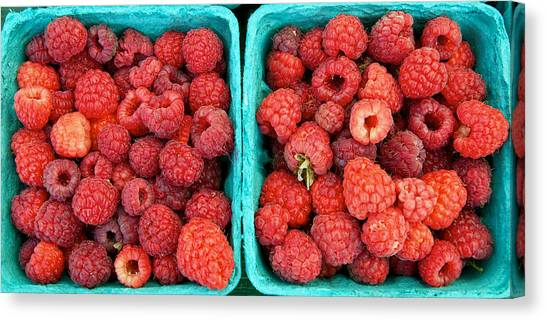 Fresh Raspberries Canvas Print