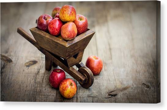 Wheelbarrows Canvas Print - Fresh Red Apples by Aged Pixel